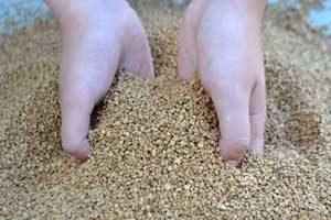 Hueso de Aceitura como Biomasa