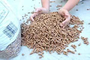 Biomasa - Pellets de Madera